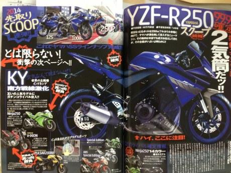 YZF-R250