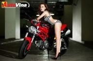 autovina_DucatiMyno_1.jpg.jpg.jpg.jpg.jpg.jpg.jpg.jpg.jpg.jpg.jpg.jpg