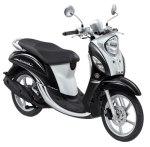 Fino-FI-Premium-(Classic-Sporty)-Black-Diamond---1