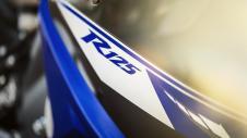 2014-Yamaha-YZF-R125-EU-Race-Blu-Detail-012